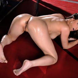 Casey Calvert in 'Twistys' Total Knock-Out! (Thumbnail 14)