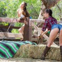 Cassidy Klein in 'Twistys' Won't Quit You (Thumbnail 1)
