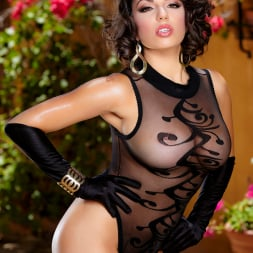 Darcie Dolce in 'Twistys' Classy As Hell (Thumbnail 12)