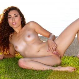 Darcie Dolce in 'Twistys' Wild At Heart (Thumbnail 91)