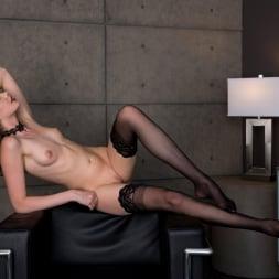 Elena Koshka in 'Twistys' Leggy Elena (Thumbnail 74)