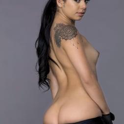 Gina Valentina in 'Twistys' Booty Baller (Thumbnail 20)