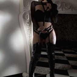 Gina Valentina in 'Twistys' Midnight Visitor (Thumbnail 16)