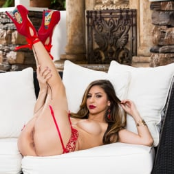 Nina North in 'Twistys' Lounging in Lace (Thumbnail 65)