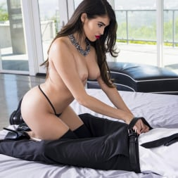 Stephanie West in 'Twistys' Bedroom Burlesque (Thumbnail 15)